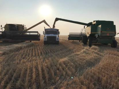 Harvest 2018 PC: Evan